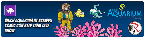 Birch Aquarium Comic Con Kelp Tank Dive Show